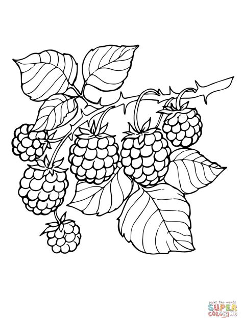 BlackBerry Coloring Page