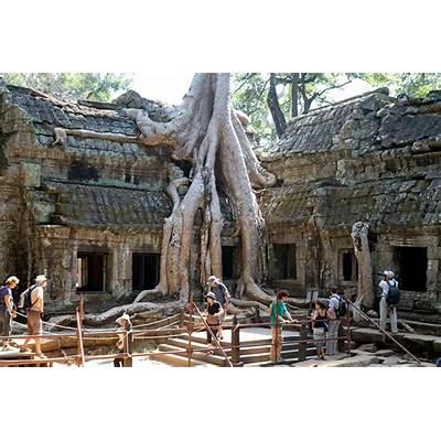 The Amazing Ta Prohm Temple in Cambodia
