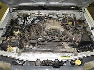 2000 Nissan Xterra Windshield Washer Fluid Reservoir Bottle 2442959   627
