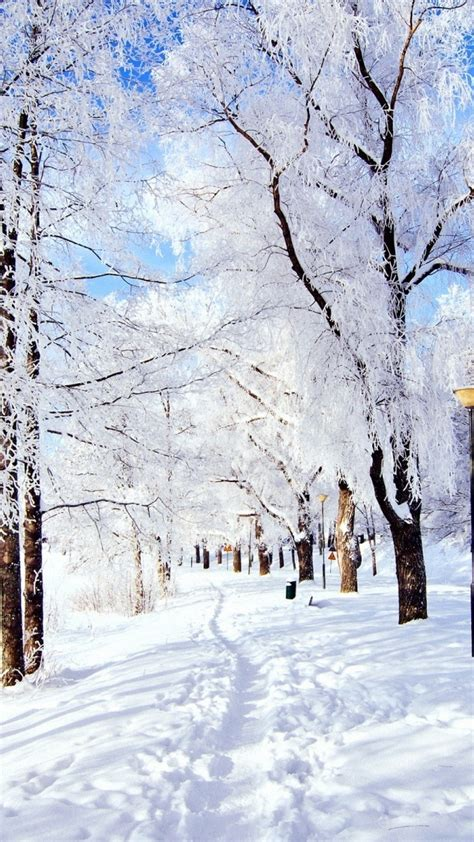 Central Park Winter Iphone Wallpaper by Snow Winter Wallpaper 183 Wallpapertag