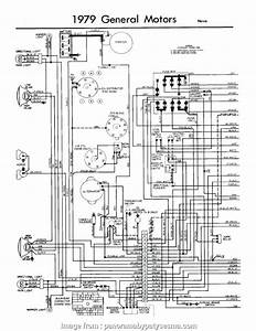 Starter Wiring Diagram  Chevy 350 Popular Sbc Starter Wiring Diagram Inspirational Alternator