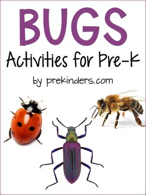 bugs activities and lesson plans for pre k and preschool 423 | bug activities preschool 300x400
