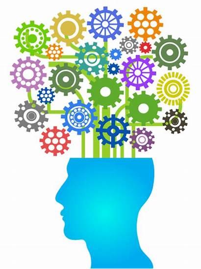 Brain Development Professional Learning Head Opportunities Rru