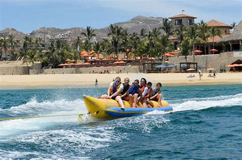 Boat Tour Cabo by Top Activities For In Los Cabos Cabo