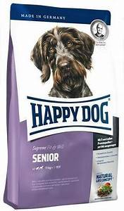 Senior   HappyDogUK
