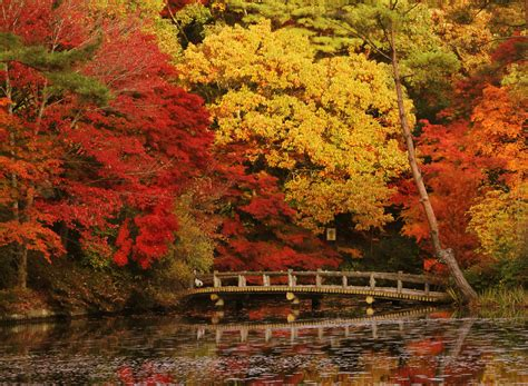 Seasons - Autumn | Official Travel Guide of Kobe