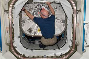 Hatch Seal Inspection   NASA