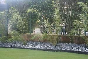Haie de bambou contemporain jardin angers par eurl for Amenagement jardin autour piscine 15 haie de bambou contemporain jardin angers par eurl