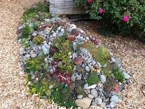 Steinbeet Pflanzen Winterhart : pflanzen f r steingarten welche eignen sich am besten ~ Watch28wear.com Haus und Dekorationen