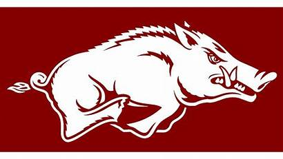 Razorbacks Arkansas Razorback University Football Dungee Fox16