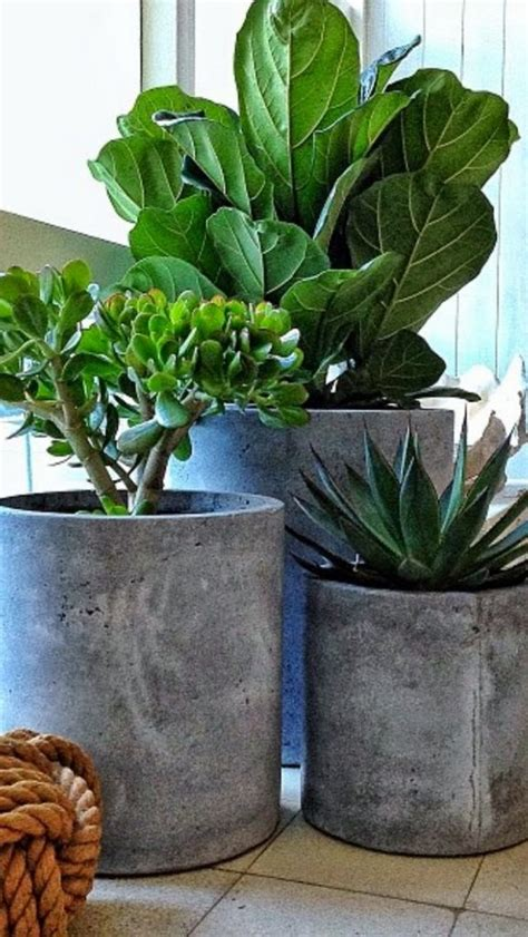 cement planters for how to make your own concrete planter the owner builder