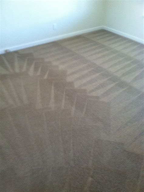 best carpet cleaners best carpet cleaners northern va upcomingcarshq com