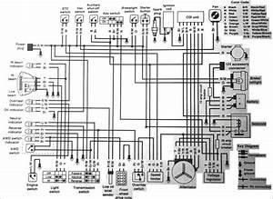 Wiring Diagram 2006 Polaris Sportsman 450 Wiring Diagram Polaris