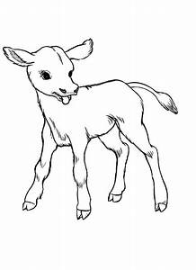 Rabbit With Carrot Cow Calf Coloring Page - Coloring Pages ...