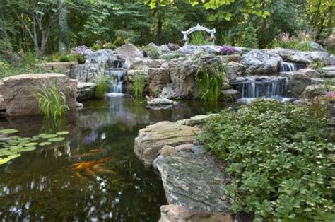 Aquascape St Charles by Aquascape Designs Offers Free Pond Tours Throughout 2012