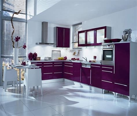 Purple And Lilac Kitchen In The Interior  Home Design And