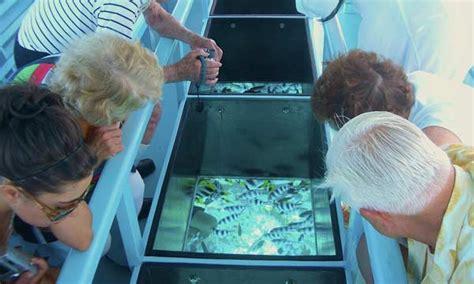 Glass Bottom Boat Bora Bora by Bora Bora Island Travel Guide And Bora Bora Deals Tahiti