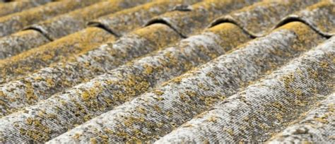 asbestos   identify  types