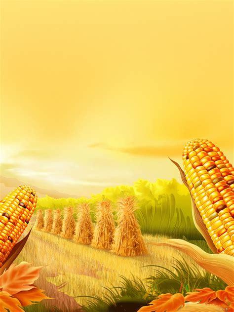 holidays thanksgiving corn farm ipad iphone hd