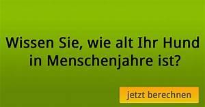Hundejahre Rechnung : hundejahre in menschenjahre umrechnen ~ Themetempest.com Abrechnung
