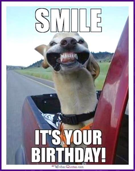 Funny Animal Birthday Memes - funny happy birthday meme animal www imgkid com the image kid has it