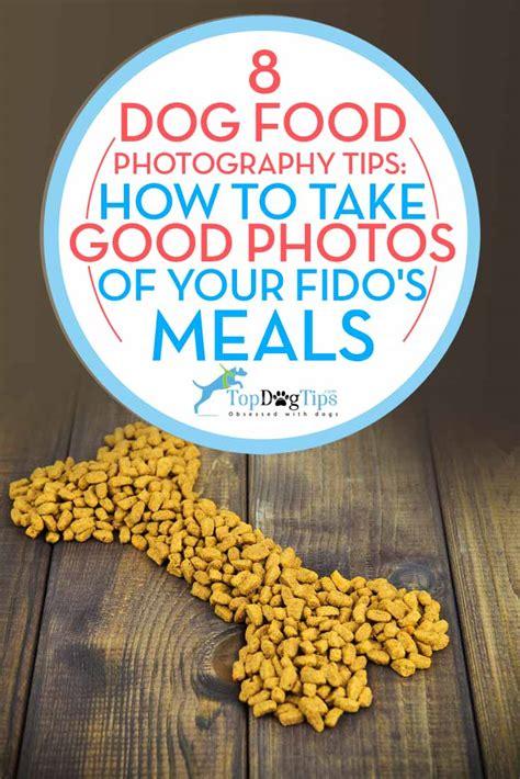 dog food photography tips    good