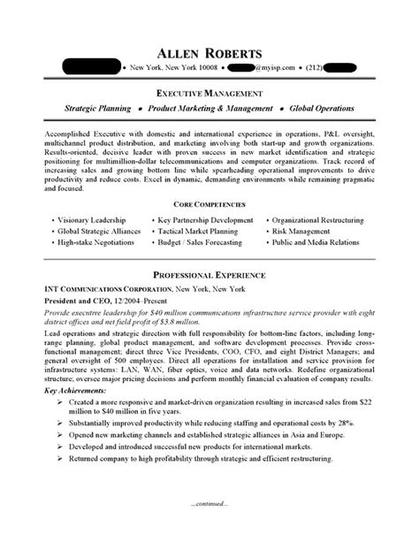 Ceo Resume by Ceo Executive Resume Sle Professional Resume