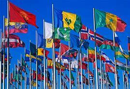 Résultat d'images pour drapeau de l'onu
