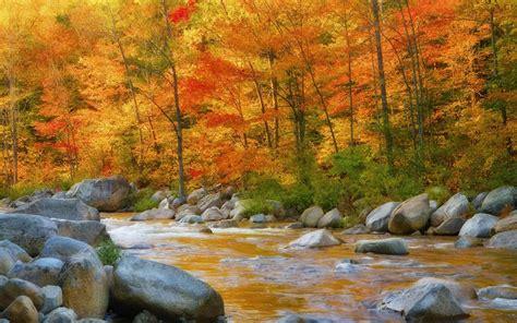 Nature Autumn River Rocks Wallpaper Hd