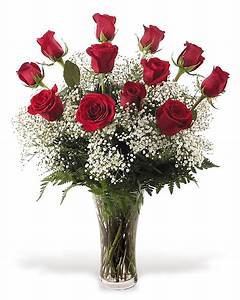 One Dozen Red Roses with Babies Breath - Flowers From The ...