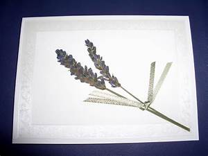 pressed lavender flowers lavender green With pressed lavender wedding invitations
