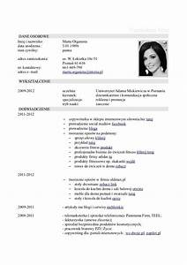 curriculum vitae resume cv With cv and resume examples