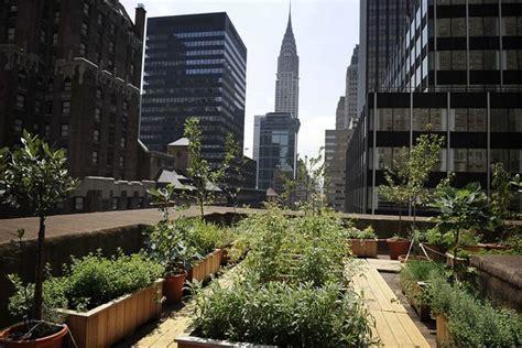 Urban Farming Is Growing A Green Future