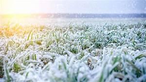 Météo Terre Net : pr visions m t o f vrier mars 2019 pour l 39 agriculture cultures prairies sol ~ Medecine-chirurgie-esthetiques.com Avis de Voitures