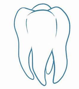 How to Draw a Tooth, Step by Step, Anatomy, People, FREE ...