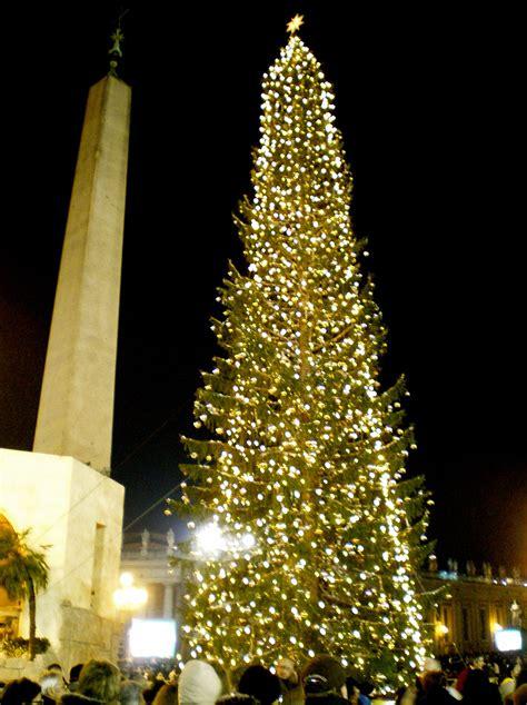 vatican christmas tree wikipedia