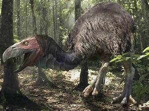 815 best Prehistoric animals images on Pinterest ...