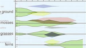 Kite Diagrams