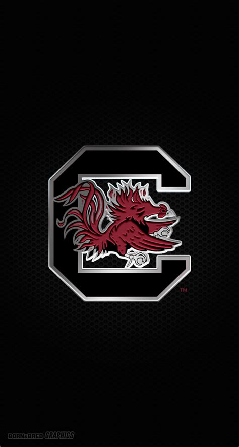 south carolina gamecock wallpaper gallery