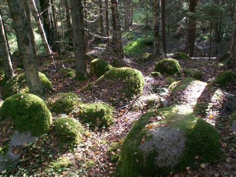 Ceļošana LV: Kaltenes kalvas