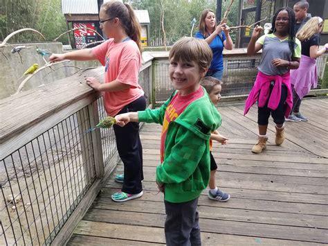 photo gallery xplor preschool amp school age mansfield tx 331 | 1721 4