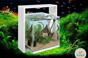 Deco Aquarium Zen : zen aquarium love ferplast ~ Melissatoandfro.com Idées de Décoration