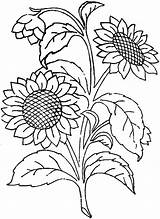 Sunflower Coloring Pages Embroidery Patterns Hand Printable Flic Kr Designs sketch template