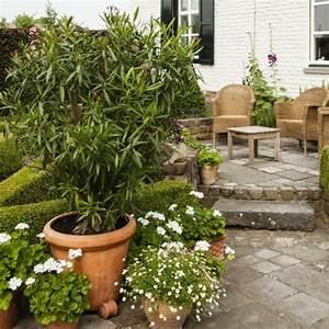 Die Schönsten Balkonpflanzen : beet balkonpflanzen seite 3 das gr ne medienhaus ~ Markanthonyermac.com Haus und Dekorationen