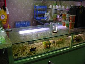 Bar Theke Tresen Gebraucht : file bar counter with aquarium jpg wikimedia commons ~ Bigdaddyawards.com Haus und Dekorationen