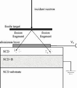Schematic Of The Fission Diamond Detector  Fdd   The Scd