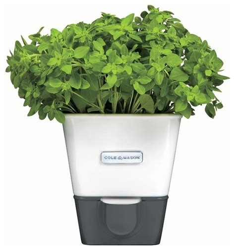 self watering indoor herb garden planter contemporary