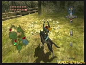 Hidden Grottos The Legend Of Zelda Twilight Princess Guide