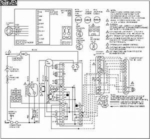 Lenox P506640