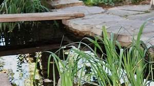 Gartenteich Richtig Anlegen : ii ii montage einer badewanne installation tipps ~ Michelbontemps.com Haus und Dekorationen